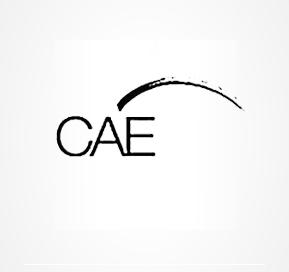 cae-289x272